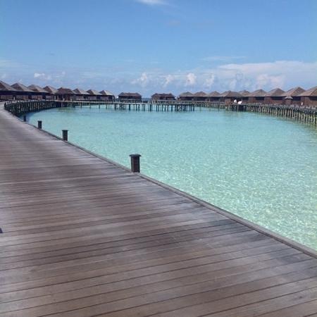 Lily Beach Resort & Spa: water and sun set villas