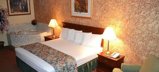 Executive Inn & Suites : Leisure Suite