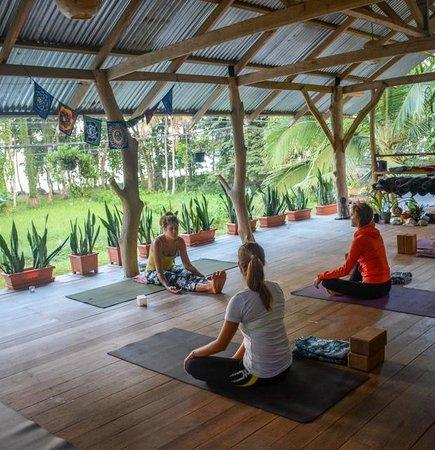 OM - Yoga, Massage, Surf, Tours & Hostel: Yoga