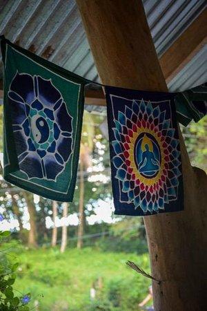 OM - Yoga, Massage, Surf, Tours & Hostel *CLOSED*: Yoga