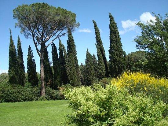 Al giardino degli etruschi - Il giardino degli etruschi ...