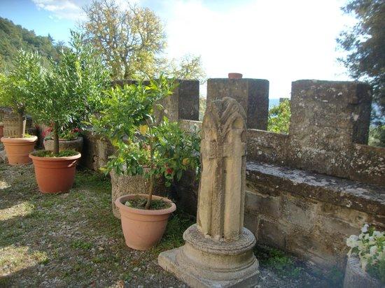 Castello di Valenzano : Hotelgelände
