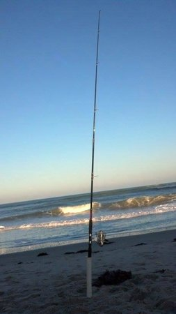 DoubleTree Suites by Hilton Melbourne Beach Oceanfront: A little surf fishing - Black Drums were running