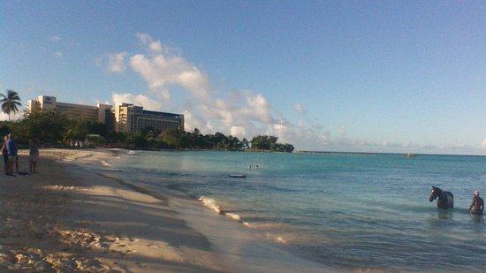 Radisson Aquatica Resort Barbados: nearby hilton hotel