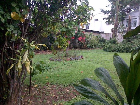 B&B Casa Margarita: Jardín 1