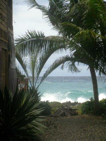 Cocolobo : Ocean view rooms