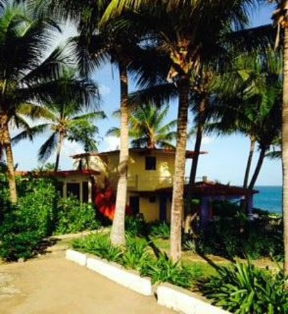 Evamer: View of our bungalow
