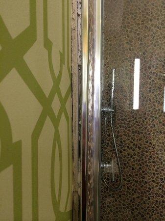Hotel Indigo Anaheim: ...exposed plaster under the shower?!