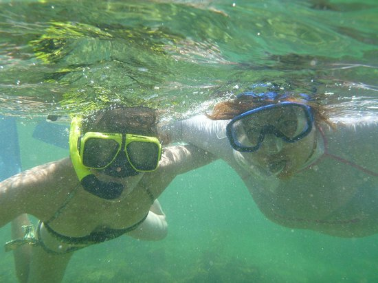 Abe's Snorkeling and BioBay Tours : VIeques, PR
