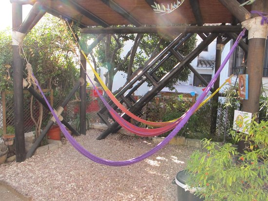 Makuto Guesthouse Hostel: common area with hammocks