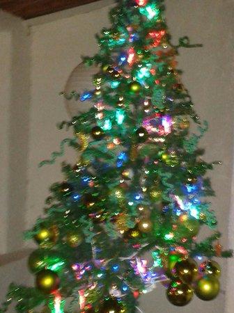 La Fusion: nuestro árbol de Navidad