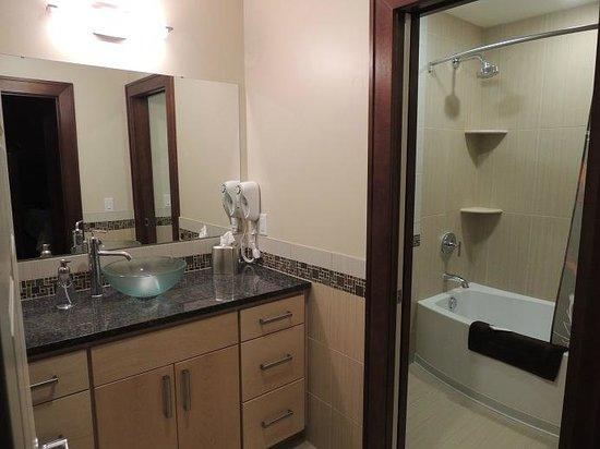Teerman Lofts : The Ontario-Bathroom