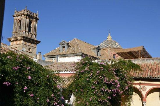 Las Casas de la Juderia: Rooftop view