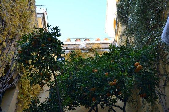 Las Casas de la Juderia: Inner patio