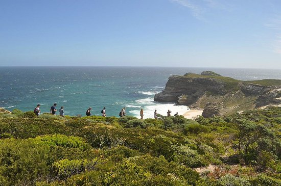 Baz Bus - Day Tours: Hike to Cape of Good Hope