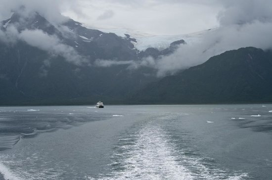 Boat tour through the Gulf of Alaska - Picture of Alaska ...