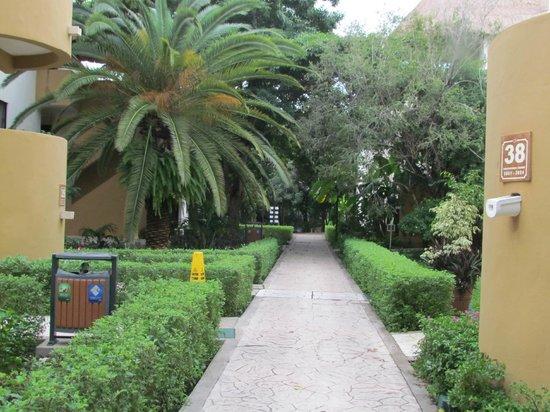 Sandos Caracol Eco Resort: Resort grounds