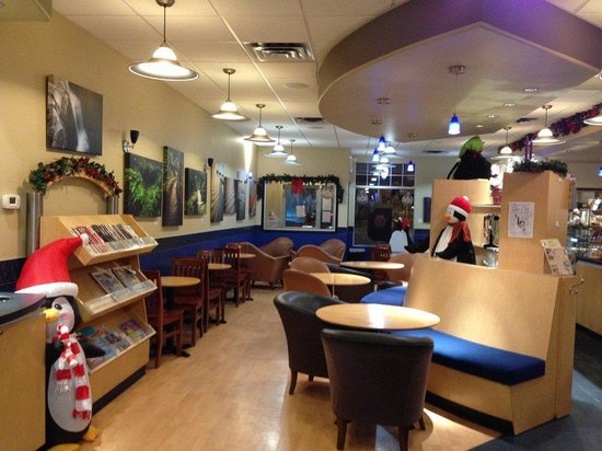 Esquires Coffeehouse Ivy Lake: Comfortable Atmosphere