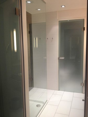 Steigenberger Hotel Herrenhof Wien: Shower and water closet