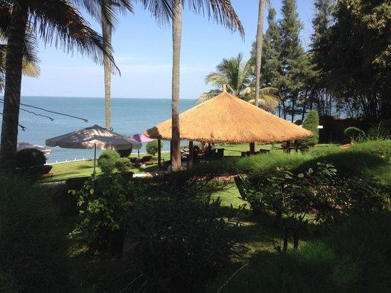 Ngala Lodge: Garden