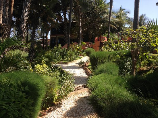 Ngala Lodge: Garden 2