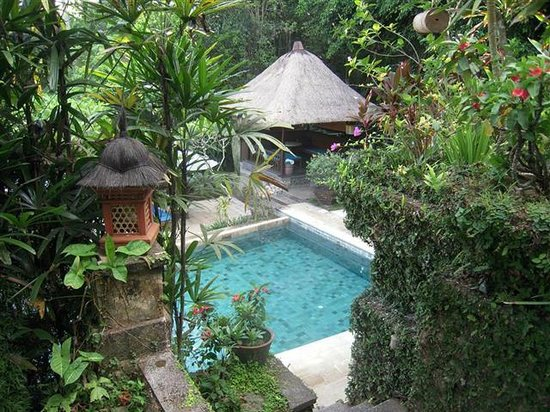 Alam Indah : Pool view from room
