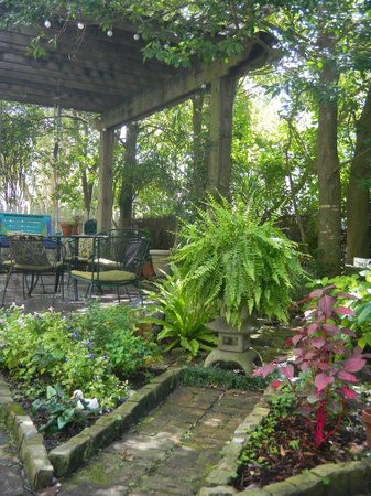Chimes Bed and Breakfast : Side courtyard and garden