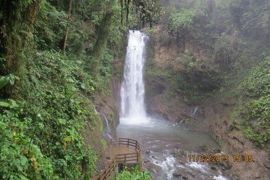 Peace Lodge: One of the falls along La Paz Waterfall hike