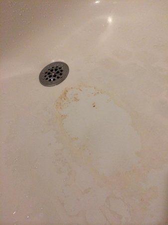 Residence Inn Charlotte South at I-77/Tyvola Road: slimy shower/tub floor