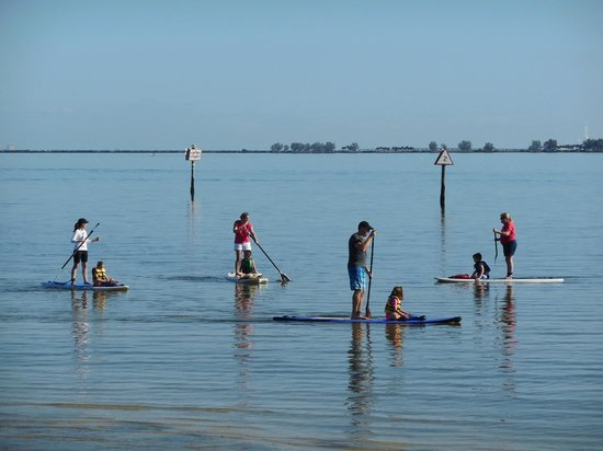 Tampa Bay SUP Stand Up Paddleboarding & Kayaking : 7th Birthday Party Standup Paddleboarding