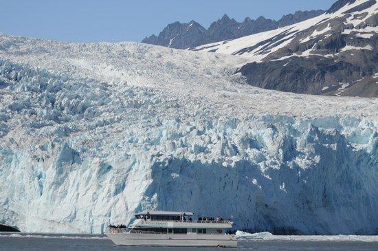 Kenai Fjords Tours: Aialik Glacier