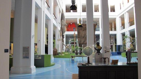 Ubersee-Museum : Interior