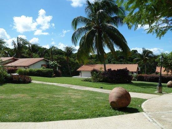 Sugar Cane Club Hotel & Spa: Sugar Cane Gardens