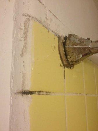 Hotel Carter: bathroom wall
