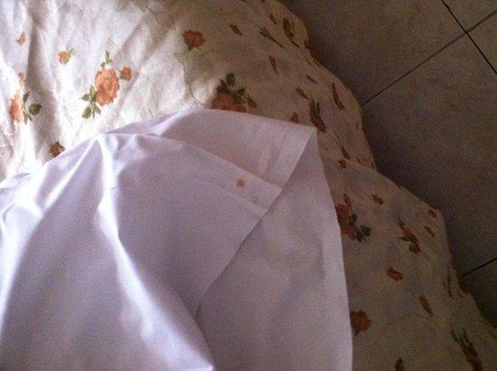 Hotel il Papavero : Sangue sul cuscino