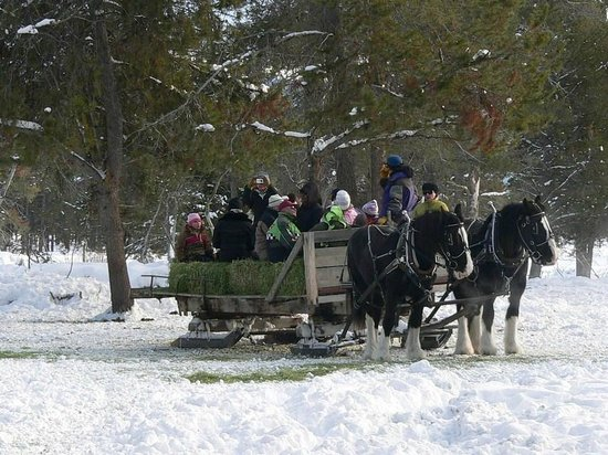 Ashley Inn: Hear the Sleigh bells as you are pulled by strong horses.