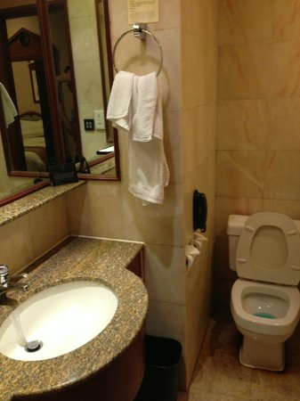 The Charterhouse Causeway Bay Hotel: bathroom falling apart