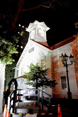 Clock Tower (Tokei-dai): 夜の時計台