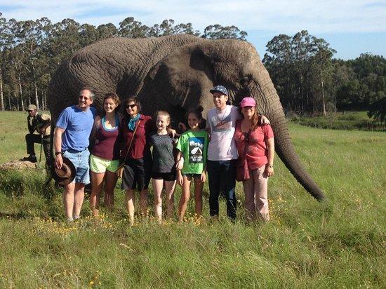 Skaris Touring- Day Tours: Family Safari