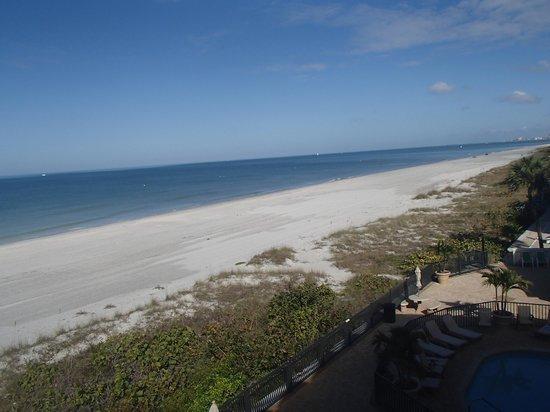 Belleair Beach Club : Beach North