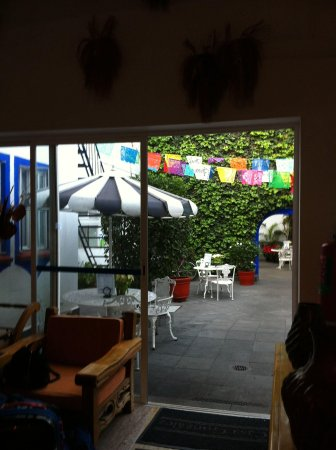 Jardim do hotel Casa Gonzalez