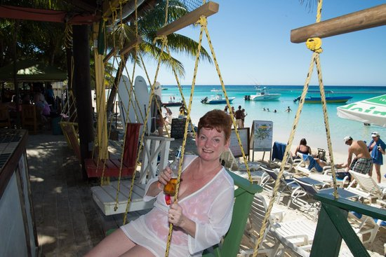 Thirsty Turtle Bar and Grill: Swings at bar