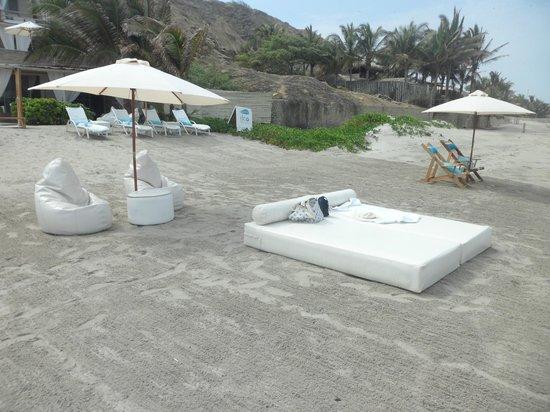 DCO Suites, Lounge & Spa: Playa