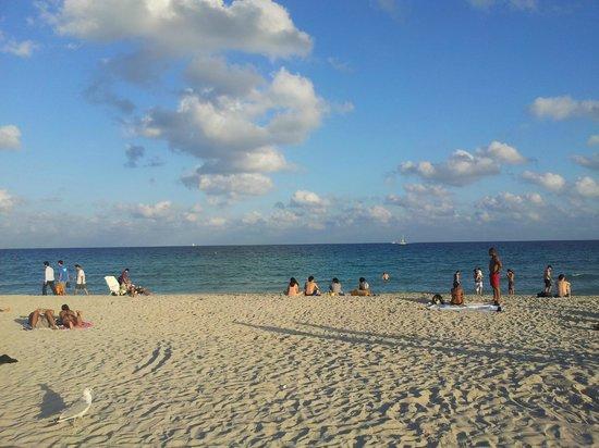 Starlite Hotel: La playa frente al hotel