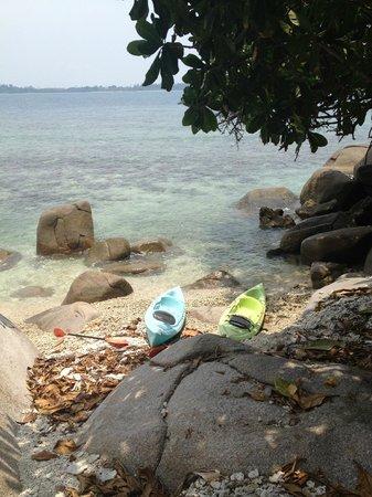 Pulau Pangkil Resort: Kayaking to the pool