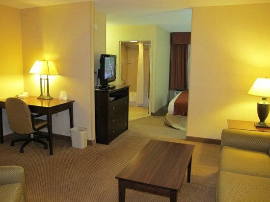 Holiday Inn Express Hotel & Suites Irving North-Las Colinas: spacious room