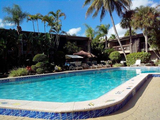 BEST WESTERN Naples Inn & Suites: Pool 2