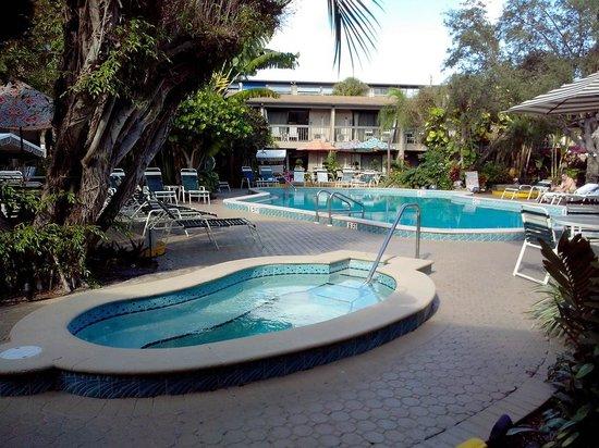 BEST WESTERN Naples Inn & Suites: Pool/Whirlpool