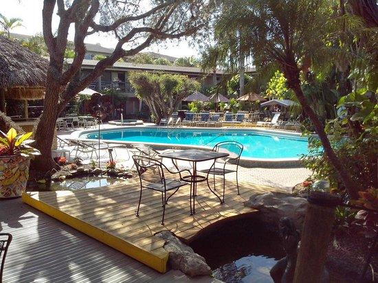 BEST WESTERN Naples Inn & Suites: Poolbereich