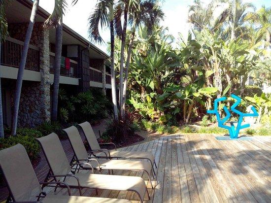 Best Western Naples Inn & Suites: Gartenanlage